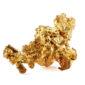 native 0.24 gram gold nugget from Venezuela isolated on white ba